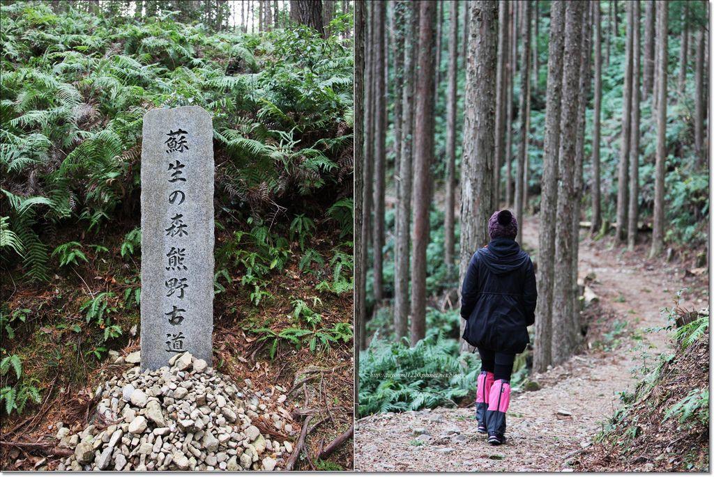熊野古道散策 (33).jpg