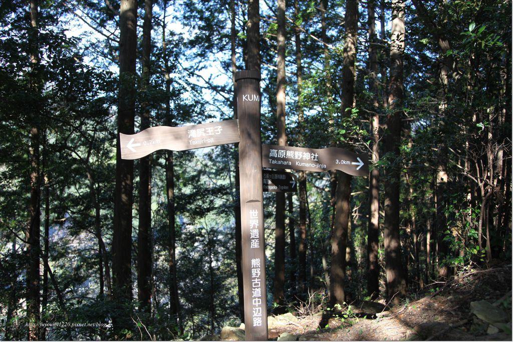 熊野古道中邊路 (8).JPG