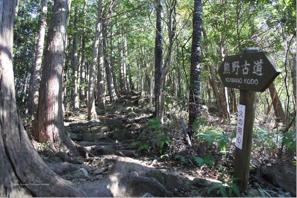 熊野古道中邊路 (9).JPG
