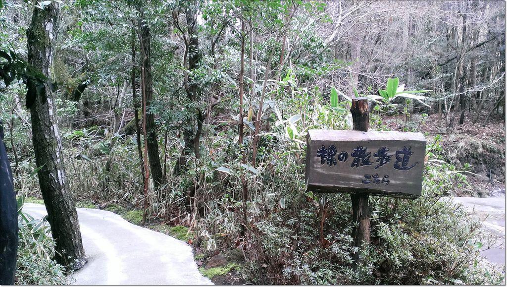 黑川溫泉 山水木 (3).jpg