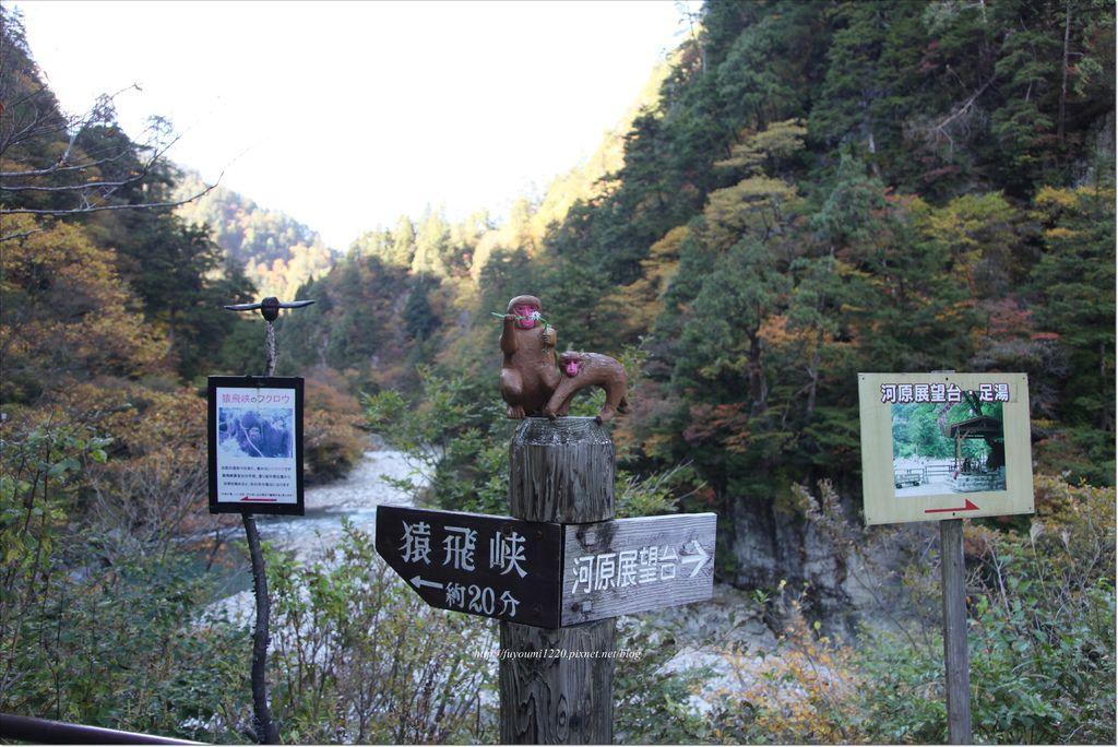 猿飛峽 (2).JPG