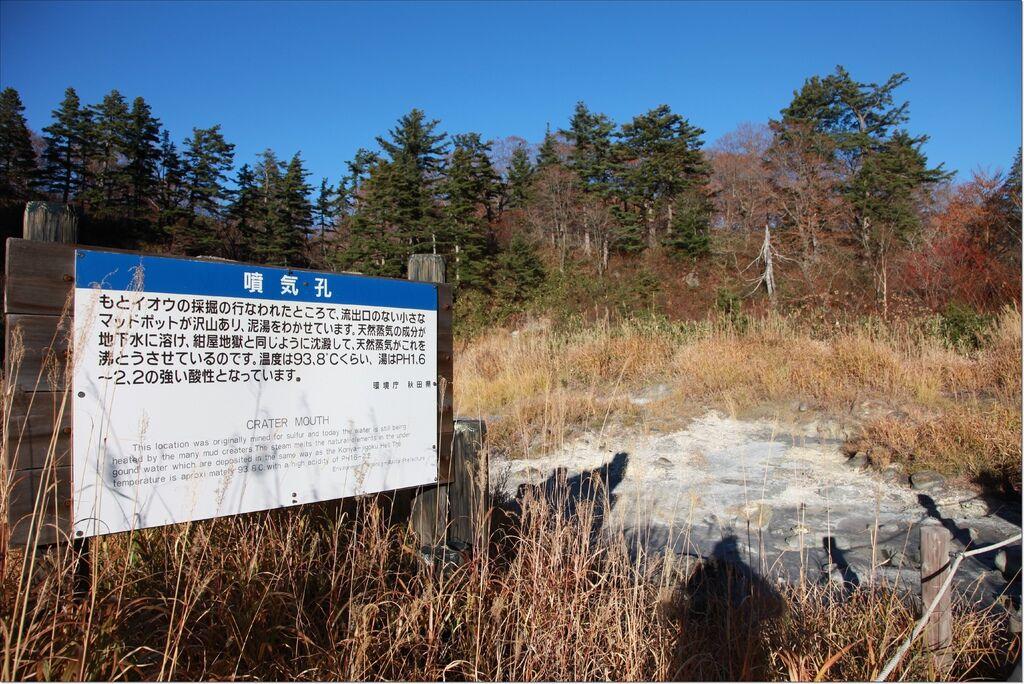 後生掛自然路散策 (4).JPG
