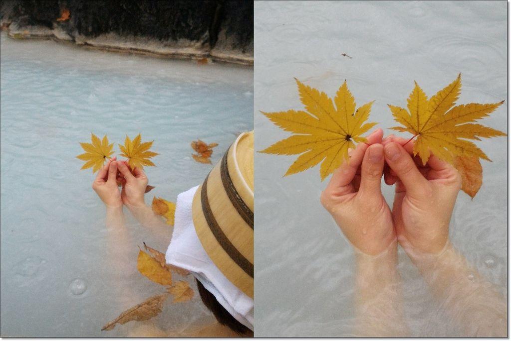 鶴の湯温泉別館山の宿 (21).jpg