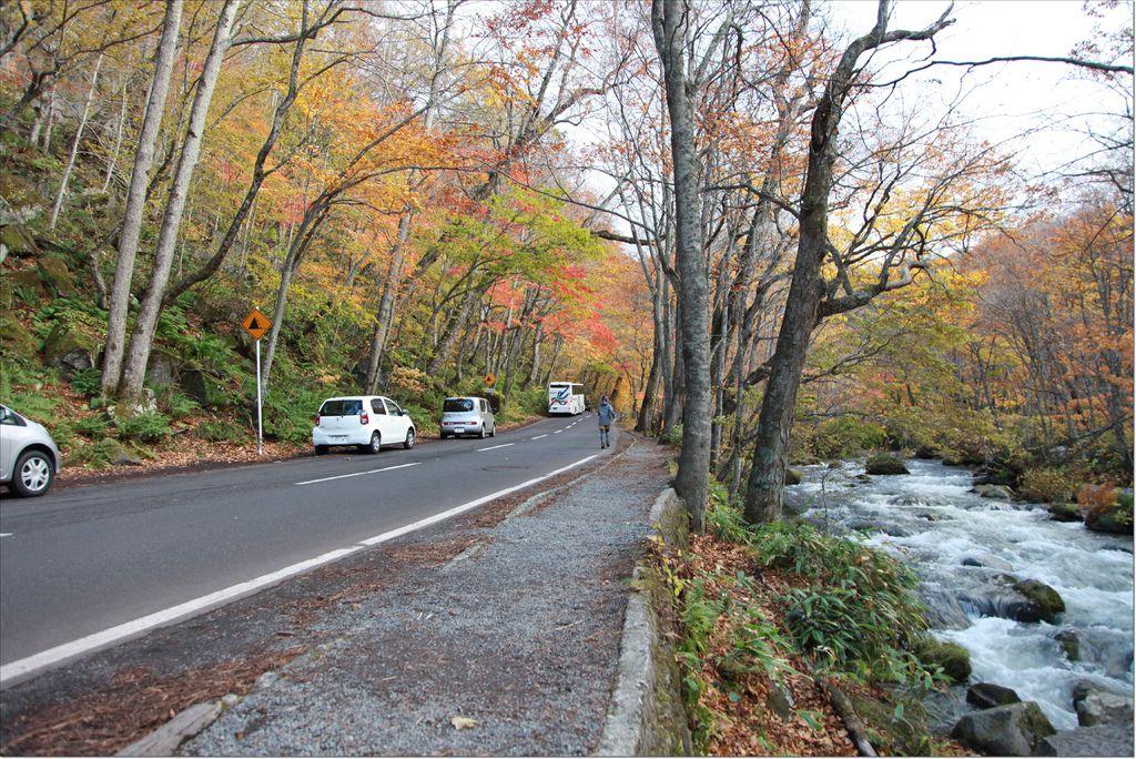 十和田湖+奧入瀨溪流 (8).JPG