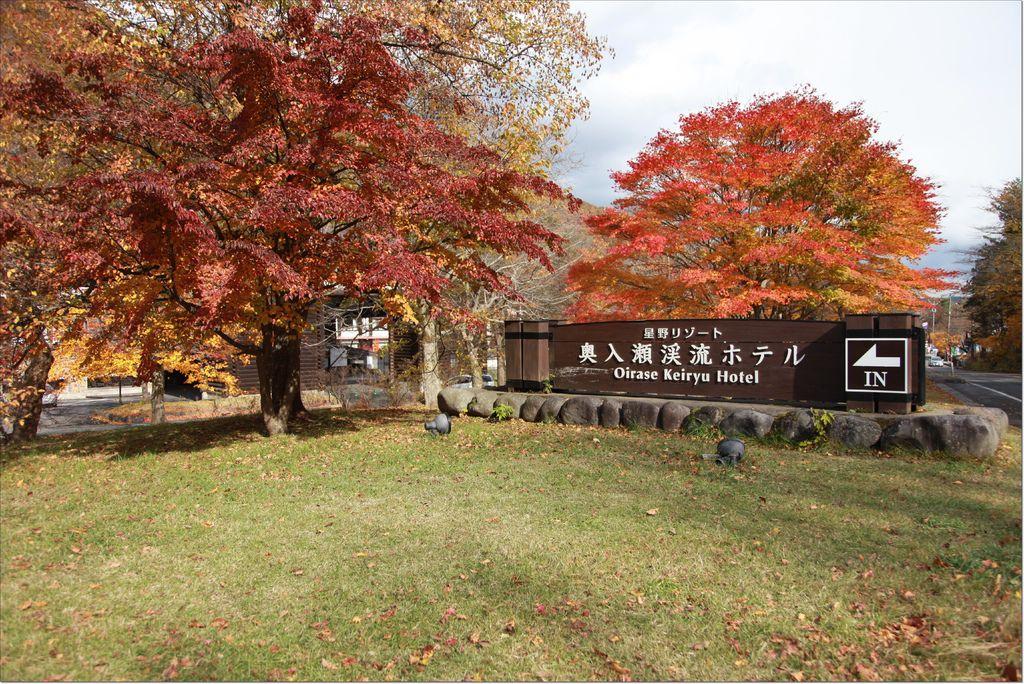 澳入瀨溪流 ホテル (16).JPG