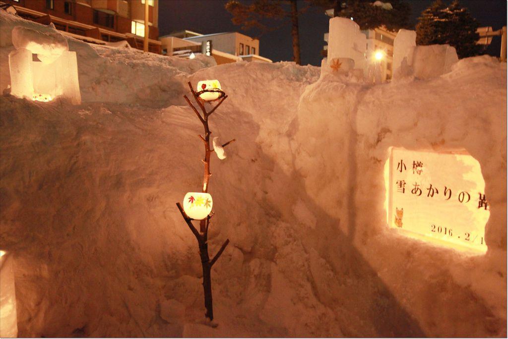 2016 小樽雪あかりの路 (11).JPG