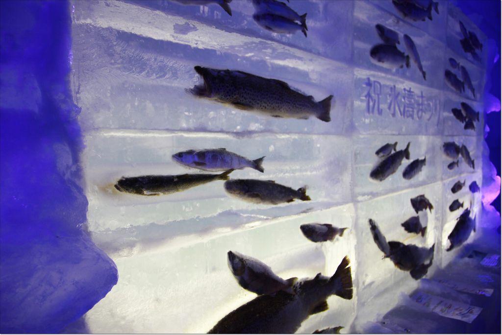 2016 支笏湖氷濤まつり (8).JPG