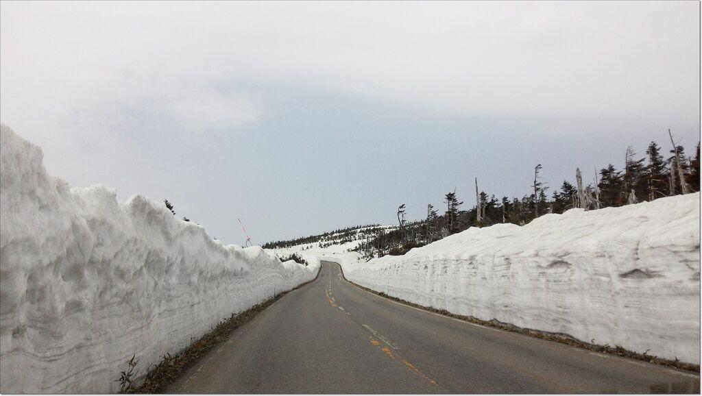 八幡平雪的迴廊 (7).jpg