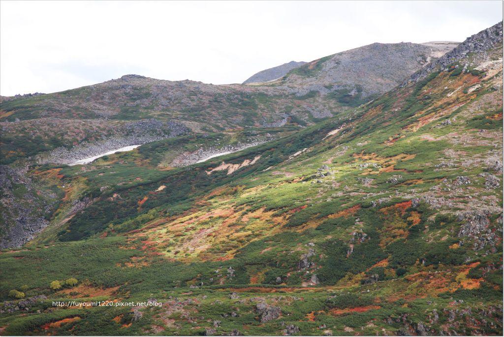 二訪黑岳 (10).JPG