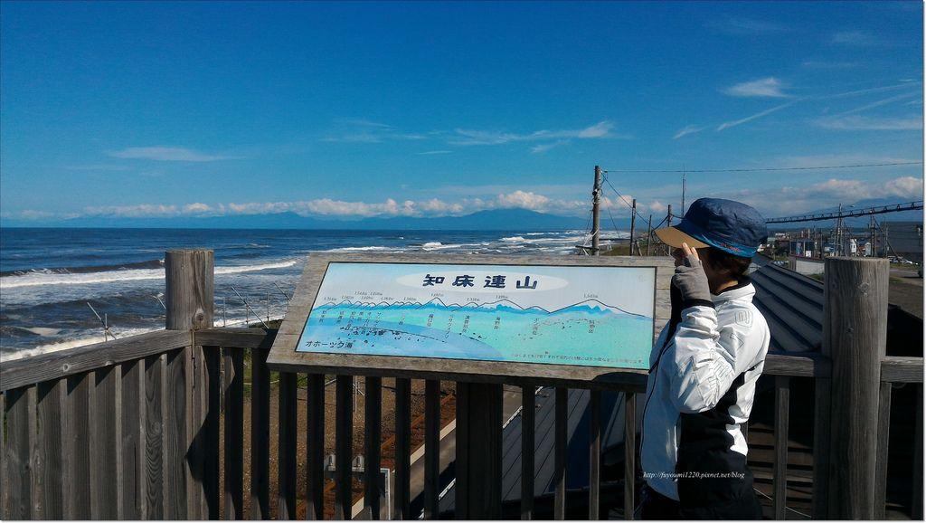 サンゴ 草 (4).jpg