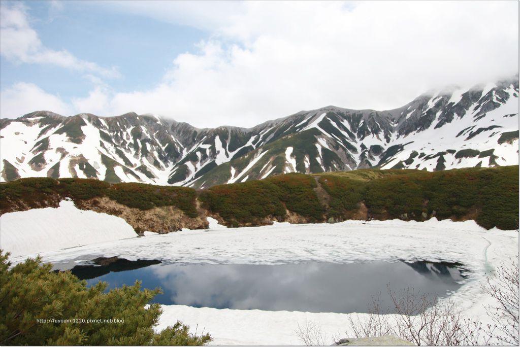 2016 初夏立山 (41).JPG