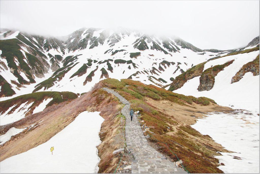 2016 初夏立山 (56).JPG