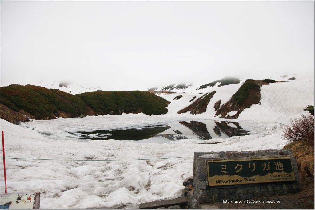 2016 初夏立山 (58).JPG