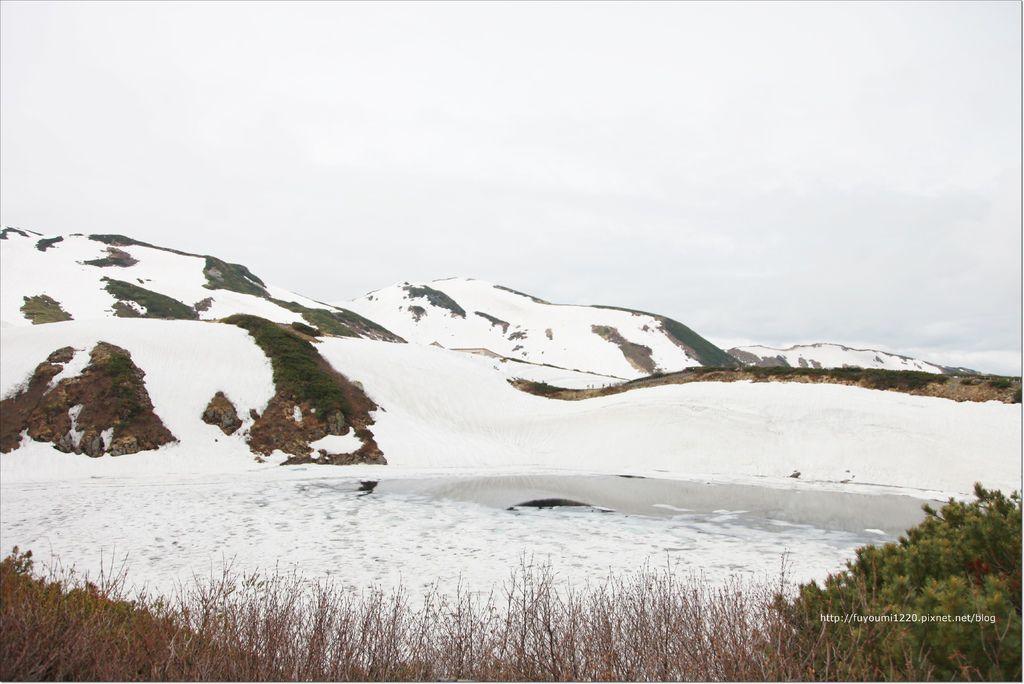 2016 初夏立山 (66).JPG