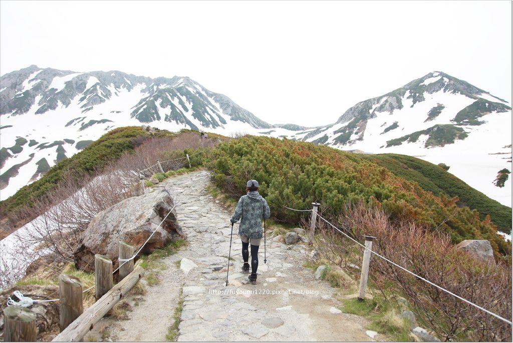 2016 初夏立山 (67).JPG