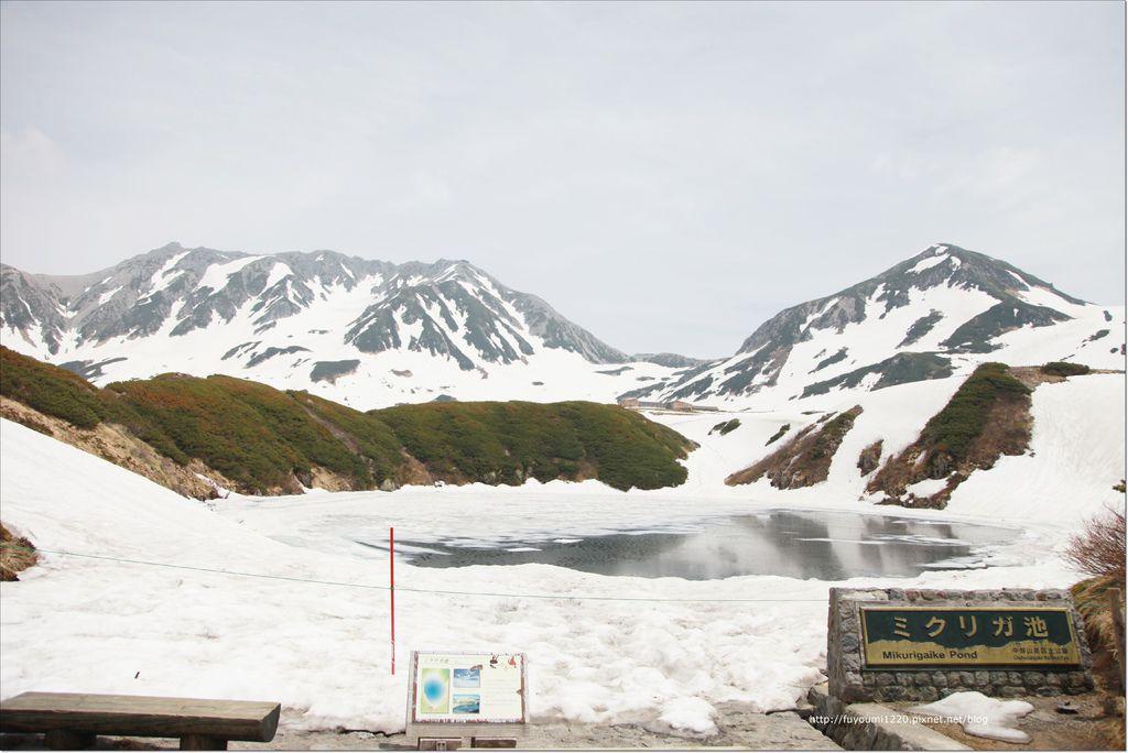 2016 初夏立山 (70).JPG