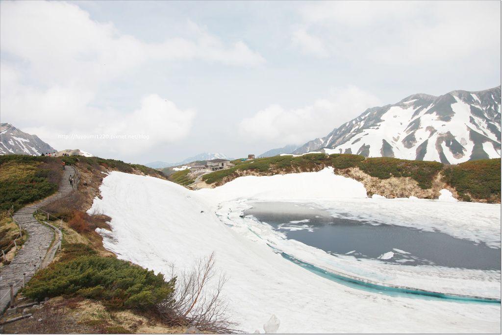 2016 初夏立山 (73).JPG
