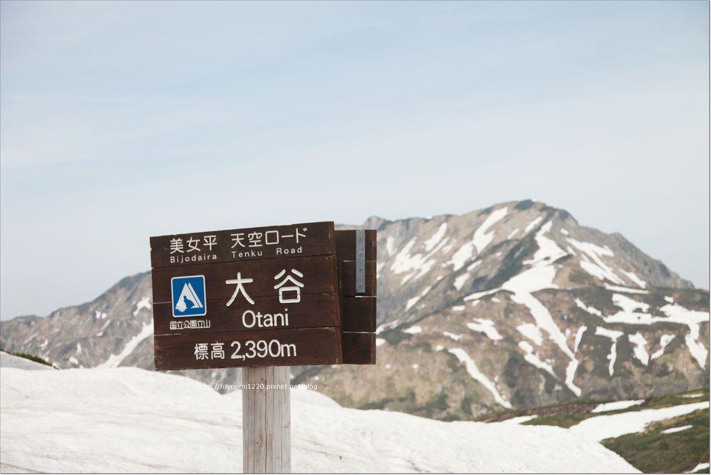 2016 初夏立山 (89).JPG