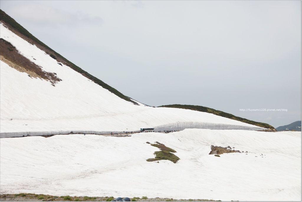 2016 初夏立山 (92).JPG