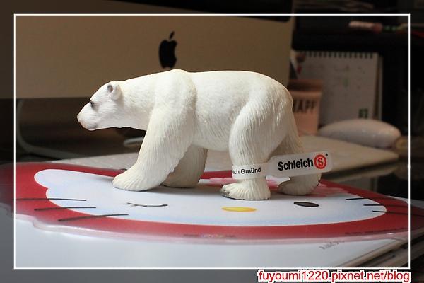 北極熊 (1).jpg