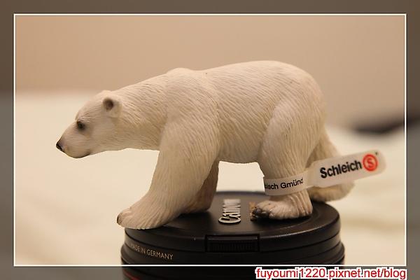 熊來了.jpg