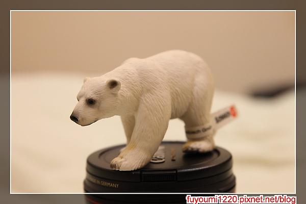 熊來了 (1).jpg