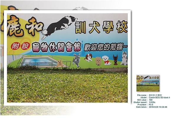 鹿和訓犬學校 (11).jpg