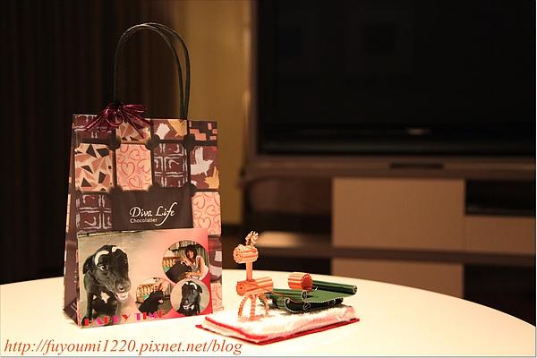 寶妹的耶誕禮物.JPG