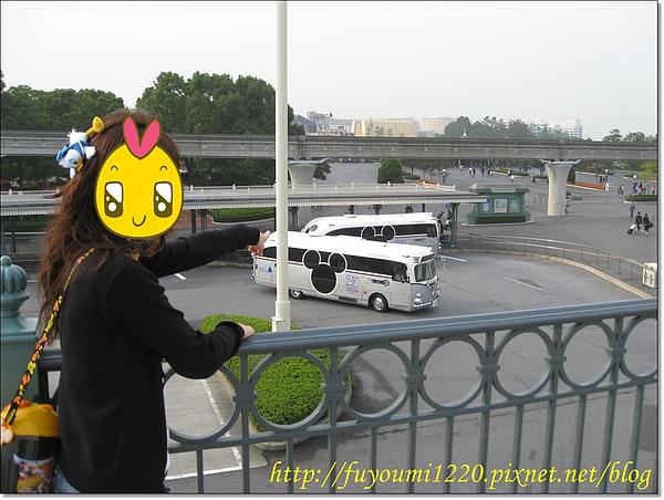 真實版的Micky Bus.jpg