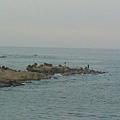 20120728基隆市潮境公園9.jpeg