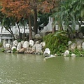 0114碧湖11.jpeg