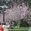 2013春節走春14.jpeg