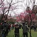 2013春節走春32.jpeg