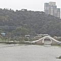 內湖鯉魚山17.jpeg