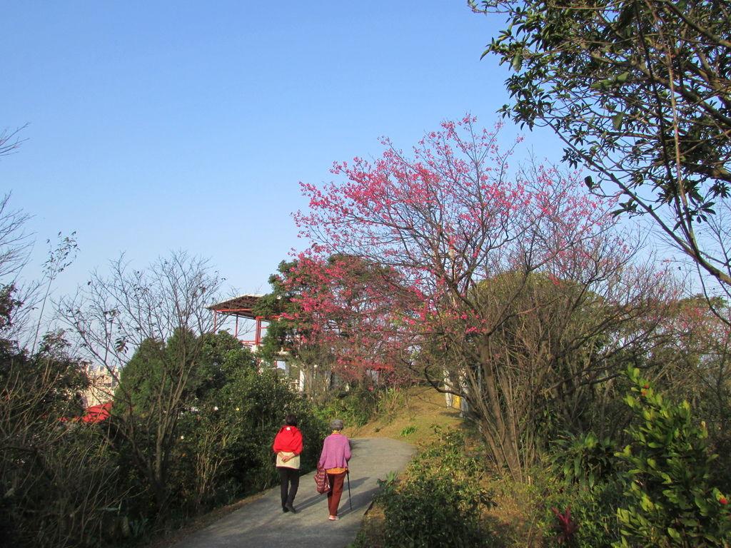 2014春節0702IMG_2060