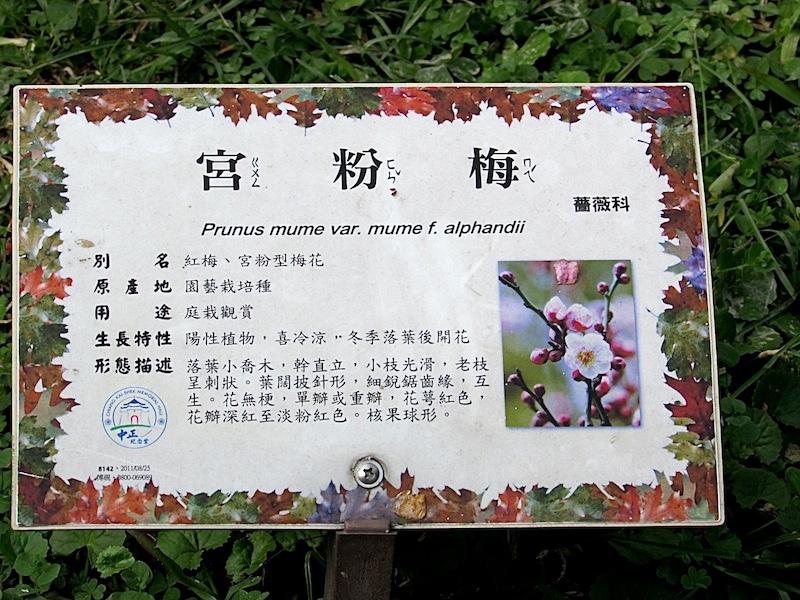 中正堂402IMG_2585.JPG