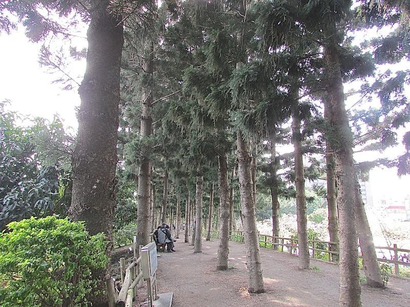 中正堂701IMG_2563.JPG