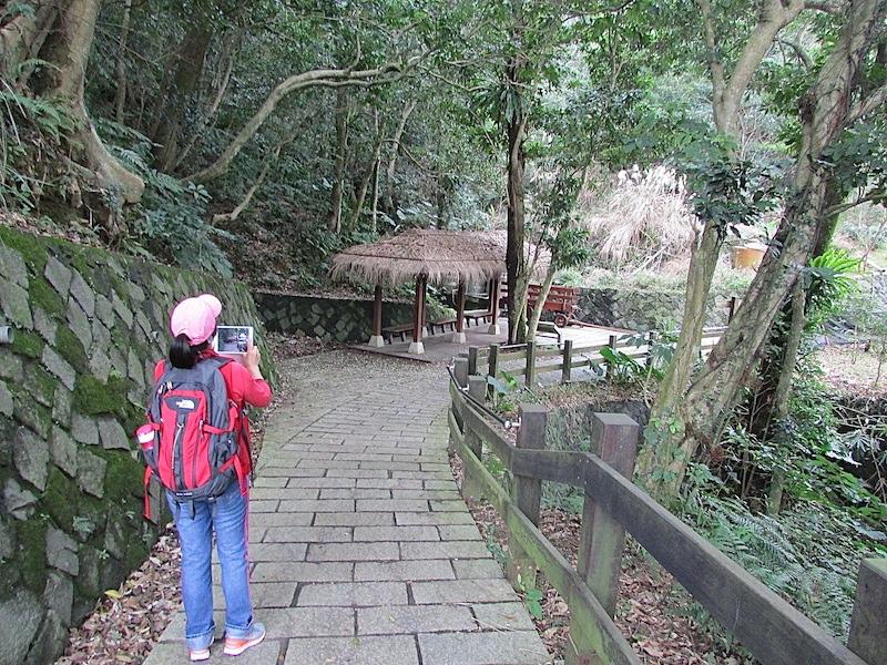樟樹步道600IMG_3006.JPG