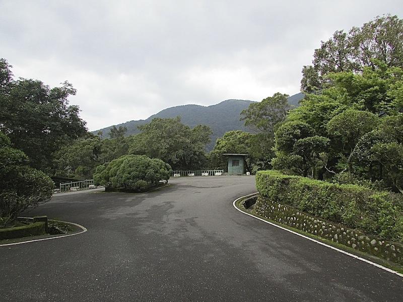 竹子湖100IMG_3062.JPG