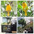 松壽公園05.jpg