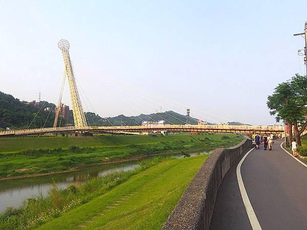 清明草12.jpg
