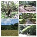 福山植物園012.jpg