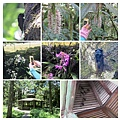 福山植物園016.jpg