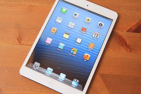 iPadmini (25)