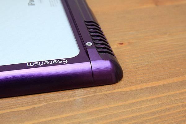 iPad Case (20)
