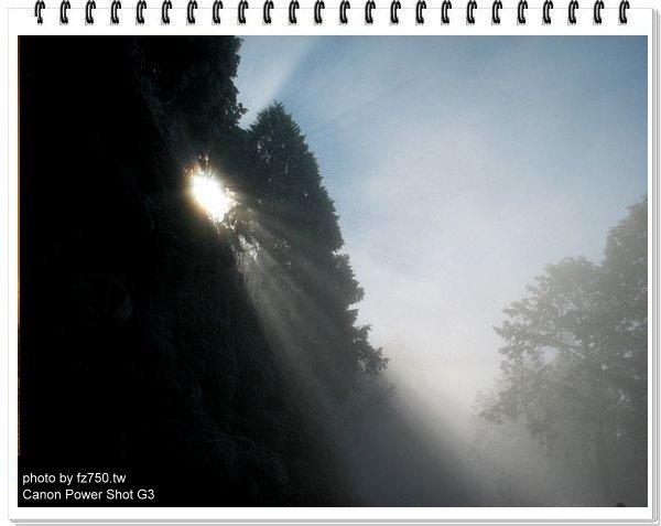 img_6422_std.jpg