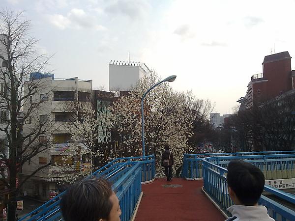 201003161022.jpg