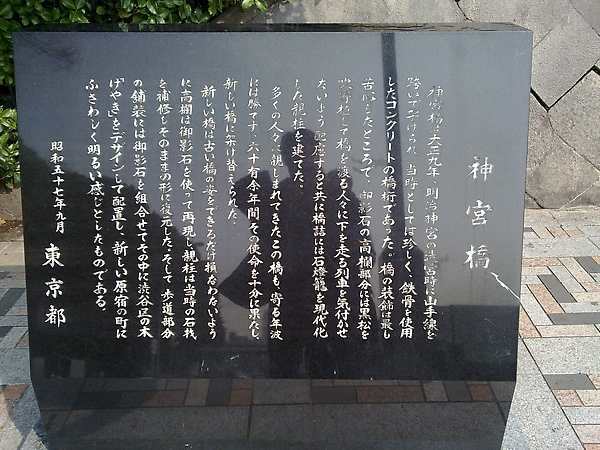 20100316994.jpg