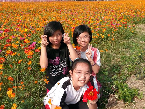 IMG_20141106_140040.jpg