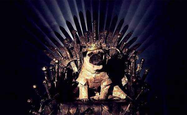 cute-pugs-game-of-thrones-pugs-of-westeros-5.jpg